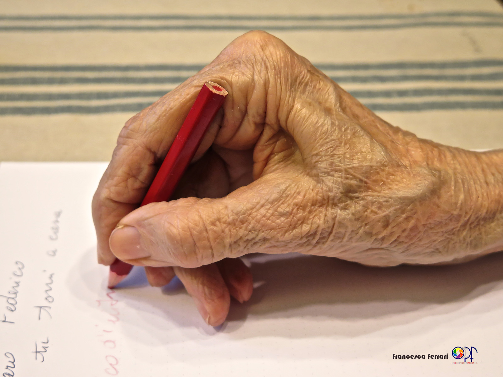 Le mani delle donne Francesca Ferrari